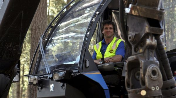 MEDIA RELEASE: Robotics opportunities in forestry being explored