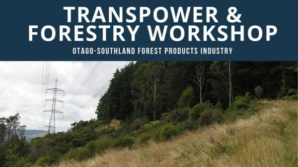 Transpower / Forestry Workshop [2 Oct 2019]