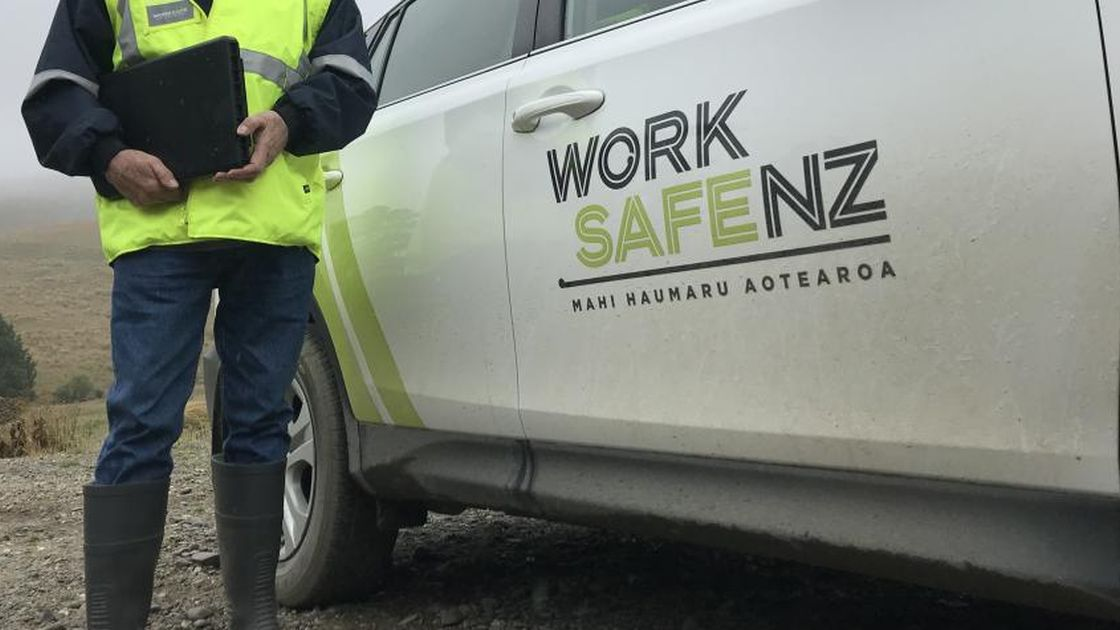 """Featured image for """"WorkSafe reminder on forest safety"""""""
